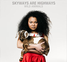 Skyways are Highways: Wild Animals